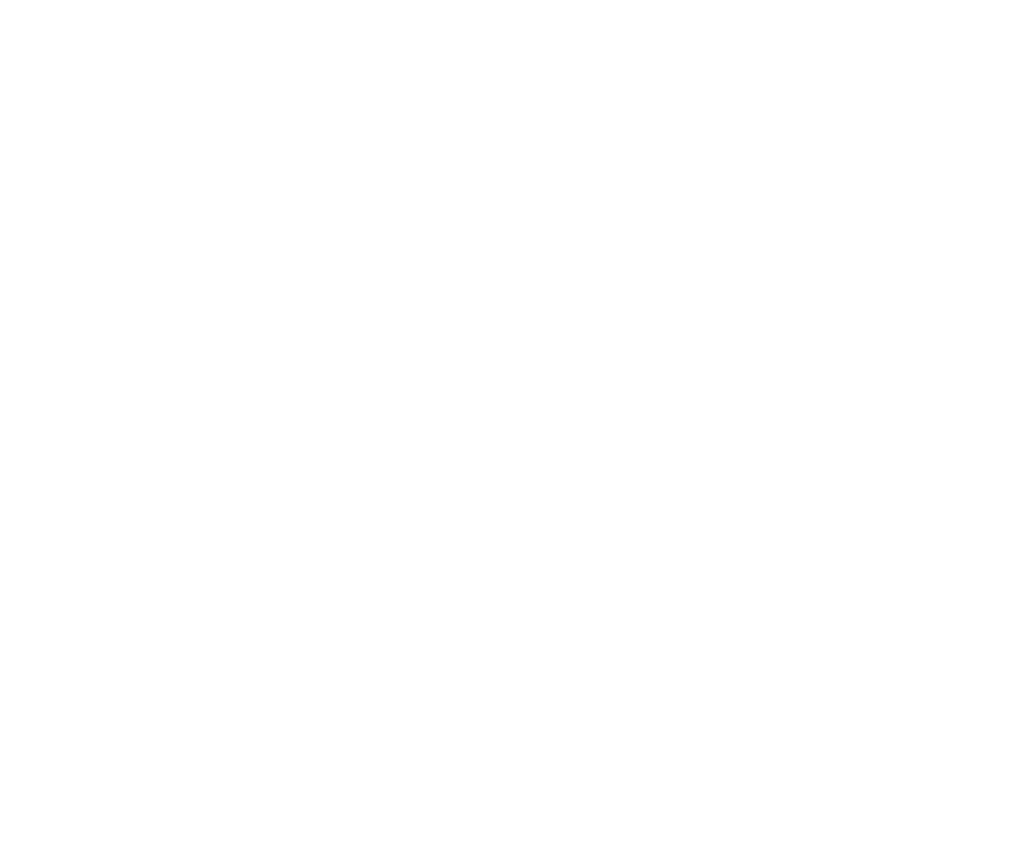 The Silver Lake Brewing Project
